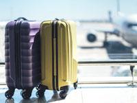 תביאו כריך מהבית / צילום:  Shutterstock/ א.ס.א.פ קרייטיב