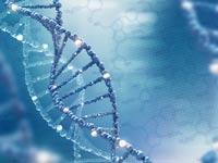 הגנטיקה תהפוך בלתי נפרדת מהרפואה ותשנה אותה לחלוטין/ צילום:Shutterstock/ א.ס.א.פ קרייטיב