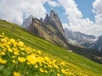 הדולומיטים / צילומים: Shutterstock | א.ס.א.פ קריאייטיב
