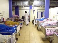 מיטות אשפוז בבית חולים. / צילום: תמר מצפי