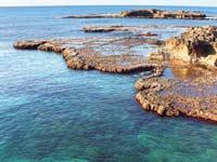 חוף דור / צילום: יחצ