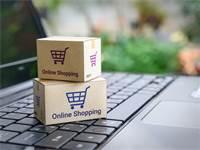 קניות מקוונות / צילום: SHUTTERSTOCK