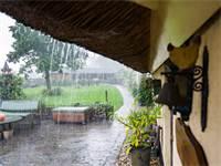 גשם / צילום: שאטרסטוק