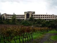 המלון הנטוש בגבעת יערים / צילום: איל יצהר
