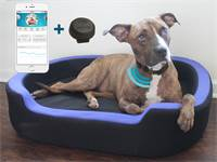 מיטת כלבים חכמה של Petrics / צילום: יחצ