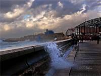 נמל יפו בינואר 2018 / צילום: תמר מצפי