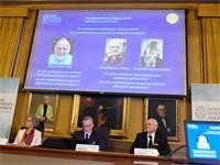 ההכרזה על הזוכים בפרס הנובל בפיזיקה היום / צילום: רויטרס