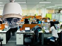 פרטיות במשרד / צילום: שאטרסטוק, א.ס.א.פ קריאייטיב