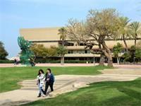 קמפוס אוניברסיטת תל אביב / צילום: איל יצהר