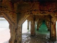 גשר רעוע / צילום: SHUTTERSTOCK