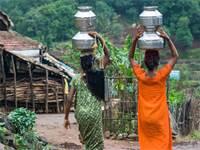 נשים עם כדי מים בהודו / צילום: שאטרסטוק