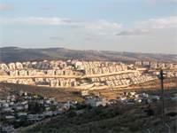 היישוב צור הדסה / צילום: שלומי יוסף
