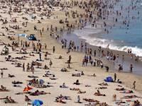 החוף בסידני. דומה לישראל יותר משחשבנו / צילום: רויטרס