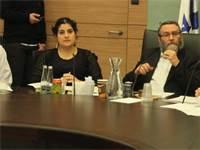 שגית אפיק בוועדת הכספים / צילום: איציק הררי, דוברות הכנסת