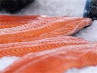 נתחי סלמון על קרח בשוק ברגן, נורבגיה / צילום: Shutterstock
