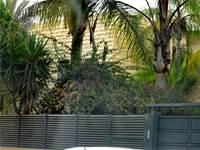 בית ראש הממשלה בנימין נתניהו קיסריה / צילום: גיל ארבל