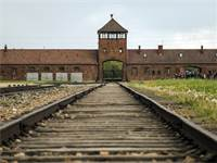 מחנה ההשמדה אושוויץ שבפולין / צילום: שאטרסטוק
