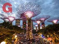 Gardens by the Bay, סינגפור, הגן בלילה /  צילום: Shutterstock | א.ס.א.פ קריאייטיב