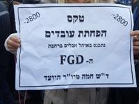 הפגנה של עובדי חחי   / צילום: יחצ
