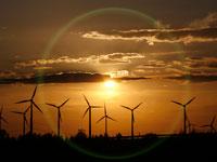 אנרגיה מתחדשת / צילום: רויטרס