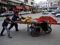נערים פלסטינים בדרך לשוק בחברון / צילום: רויטרס, Mussa Qawasma