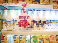 מוצרי חלב של תנובה / צילום: שלומי יוסף