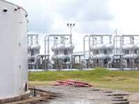 מתקן אחסון נפט בטקסס / צילום: רויטרס