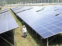 חווה סולארית בתאילנד  /  צילום: רויטרס