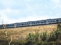 רכבת / צילום: שלומי יוסף
