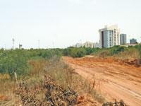 שטח השכונה החדשה בקרית אונו / צילום: איל יצהר