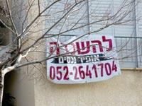 שכירות / צילום: שלומי יוסף