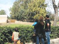 הספארי ברמת גן / צילום: תמר מצפי