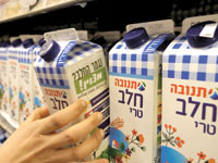 חלב תנובה / צילום:  Shutterstock / .ס.א.פ קריאייטיב