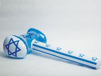 ישראל / צילום: shutterstock