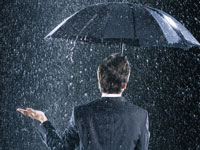 גשם של דיבידנדים / צילום:  Shutterstock/ א.ס.א.פ קרייטיב