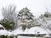 יפן בלבן. למעלה: טירת נאגויה בשלג / צילום: Shutterstock | א.ס.א.פ קריאייטיב