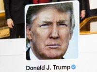 חשבון הטוויטר של דונלד טראמפ / צילום: שאטרסטוק