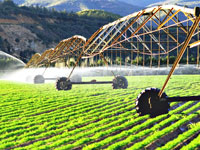 מכונת השקיה בשדה. /צילום:  Shutterstock א.ס.א.פ קרייטיב