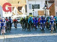 סייקלינג אקדמי במירוץ בבלגיה / צילום: שאטרסטוק