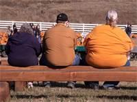 """השמנת יתר קיצונית בארה""""ב / אילוסטרציה: שאטרסטוק"""