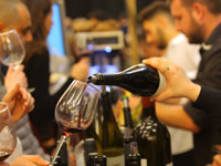 תערוכת היין / צילום:  דיוויד סילברמן