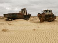 מאז המאה ה־20, הולכת הימה ומתייבשת / צילום: Shutterstock | א.ס.א.פ קריאייטיב