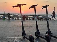 """קורקינטים של חברת BIRD / צילום: יח""""צ"""