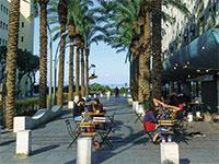 רחוב שער פלמר בעיר התחתית, חיפה / צילום: shutterstock, שאטרסטוק