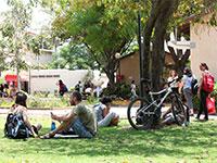 במכללת בית ברל / צילום: חן גלילי
