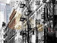 מנהטן, ניו יורק / צילום: shutterstock, שאטרסטוק