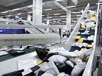 מסועי חבילות ממיין חבילות מאתרי קניות אונליין  / צילום: דוברות דואר ישראל
