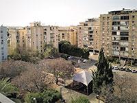 שכונה ל', צפון תל אביב / צילום: קלר וויליאמס