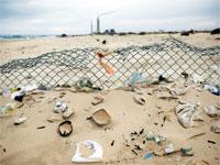 פסולת בחוף זיקים. מנגנון ההדחקה שלנו פועל היטב / צילום: רויטרס