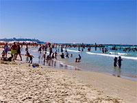 חוף הים בתל אביב / צילום: שני אשכנזי, גלובס